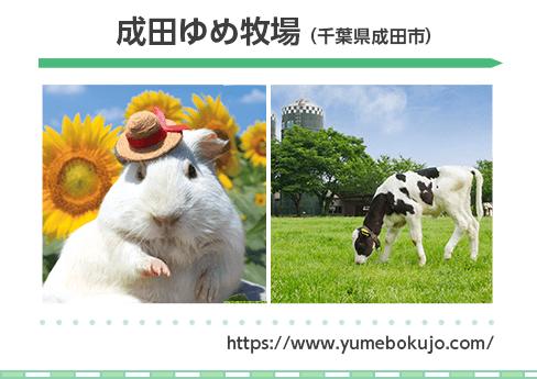 成田ゆめ牧場 (千葉県成田市)