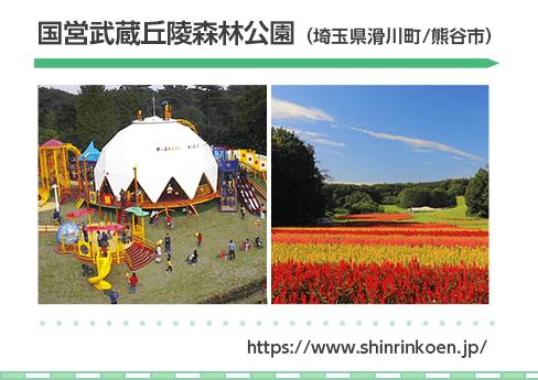 国営武蔵丘陵森林公園(埼玉県滑川町/熊谷市)